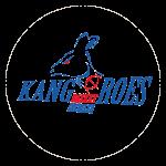 Kangoeroes Mechelen